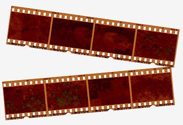 Photography, negatives, film and slide scanning service UK